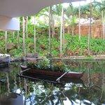 The lobby pond