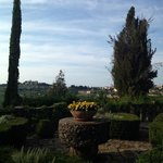 Beautiful garden with great view