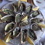 Oysters! So delicious!!!!!!