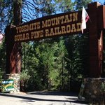 Take a trip on the Yosemite Mountain Sugar Pine Railroad!