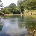 Big Well Fly Fishery