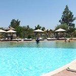 pool hear restaurants
