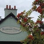 Rowan tree at the Rowan Tree Inn