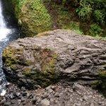 The climbing rock