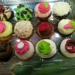 a dozen mini cupcakes.