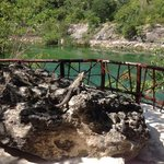 Mayakoba nature trail lookout.