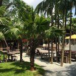 Looking out toward the pool and lobby. Grab a coconut and get some sun!