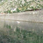 Река Шкудра