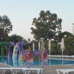 draggon pool