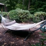 Hammock to use in the back of Inn
