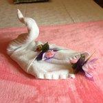 Towel swan!