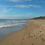 ampia spiaggia libera di fronte all'hotel