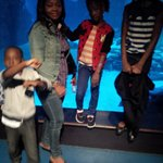 My wife, Chimezie, and daughters diving into Sea Life, London