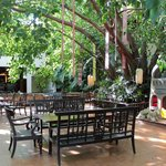 Al fresco dining at Slee Banyan