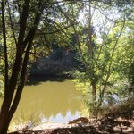 Napa River behind cottage 103