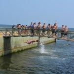 Bridge jumper....probably a 10 foot drop