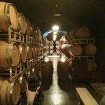 Bella Wine Cave