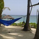Hammock friendly property ~I love this place. Brought my own. 8/12/14