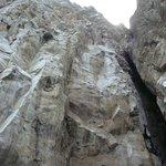 Roca Leon Dormido
