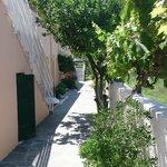 Walk to garden annexe