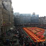 Grand Place 17.8.14 Full of Begonias
