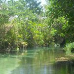 White river,nature intacte