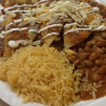 Enchiladas with spicy beans
