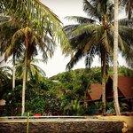 Les bungalows autour de la piscine