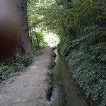 Photo de 529261