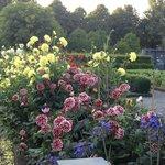 beautiful garden settting