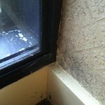 window filthy with grime and spider webs