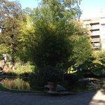 Le jardin des plantes d'Anvers