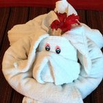 Love the daily towel animals!