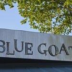 Foto di The Blue Goat