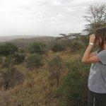 Disfrutando de la vista desde la Piscina. Se pueden avistar cebras, jirafas, bufalos y elefantes
