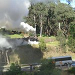 Puffing Billy full steam ahead!