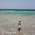 Отлив моря