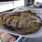 Whole grilled Turbot - delicious!