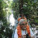 Canoe ride for wildlife spotting.