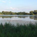 Beautiful lakeside location