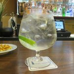 A guantlet of a gin and tonic at the hotel bar!