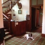 Dalrachney Lodge reception, guarded by Archie