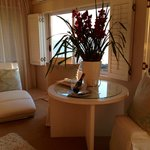 Orchids in room