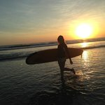 Endless Summer Surf School