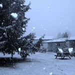 snow fall in the camp