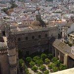 De cima... ainda na torre, o pátio das laranjas, que eu ainda não havia visitado.