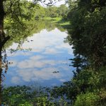 Maramba River view from Restaurant