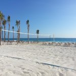 the BEST beach volleyball!