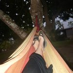 Hammock in the grounds