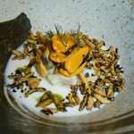 Mussel, kingfish, buttermilk and wild rice